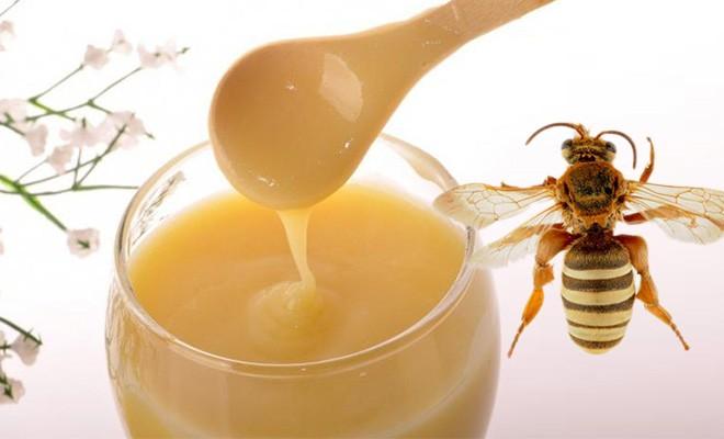 Полезные свойства трутневого молочка. Как применять трутневое молоко. Витамины и минералы содержащиеся в трутневом молочке.