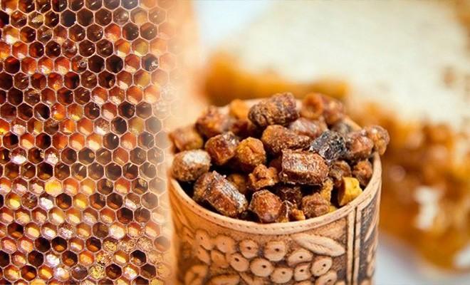 Что такое пчелиная перга и чем она полезна. Как правильно применять пчелиную пергу.