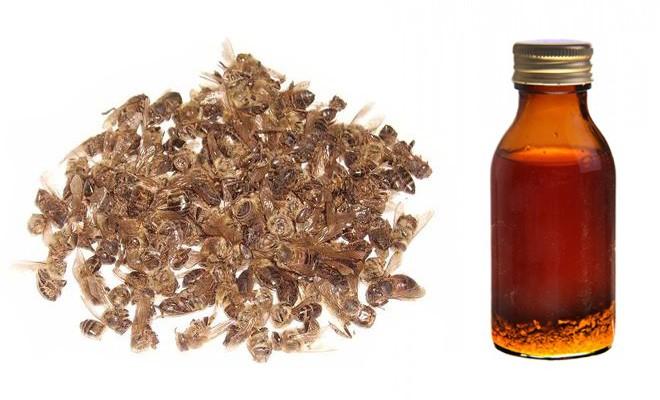 Пчелиный подмор при лечении суставов возрастные заболевания суставов