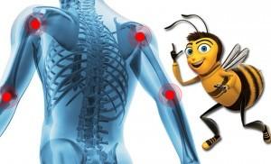 Лечение пчелиным подмором суставов. Отвары, мази и настойки из подмора для лечения наших суставов.