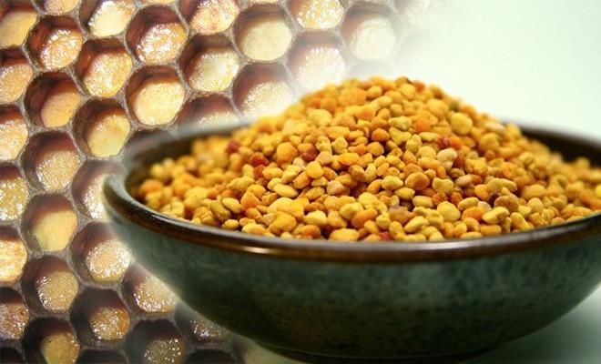 Целебные свойства перги. Как хранить пергу в гранулах и сотах?