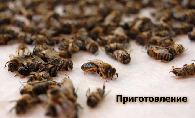 Приготовление пчелиного подмора
