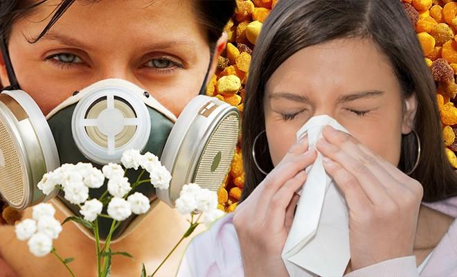 Аллергическая пыльца-что это такое