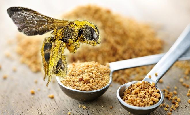 Польза которую приносит цветочная пыльца.