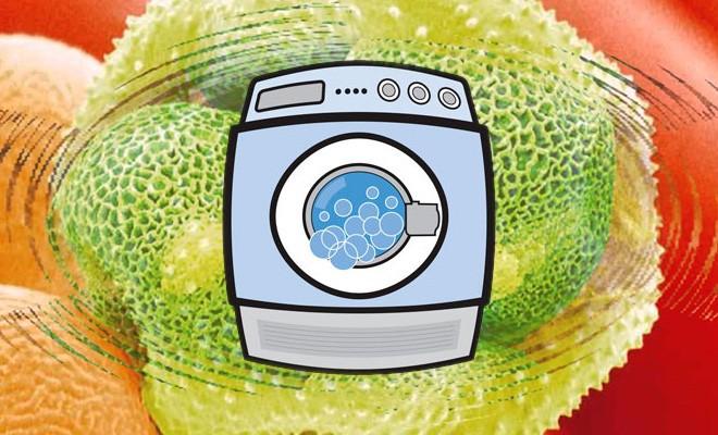 Как отстирать пыльцу, не испортив одежду. Народные рецепты от избавления пыльцы на одежде.