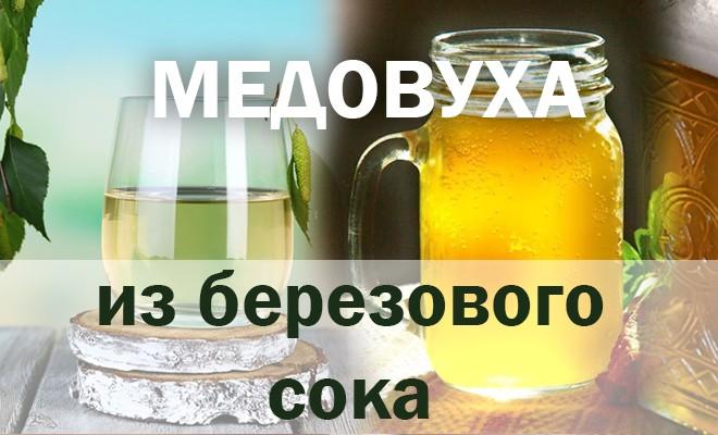 рецепт медовухи из березовового сока