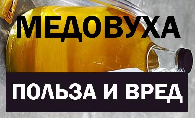 Польза и вред медовухи
