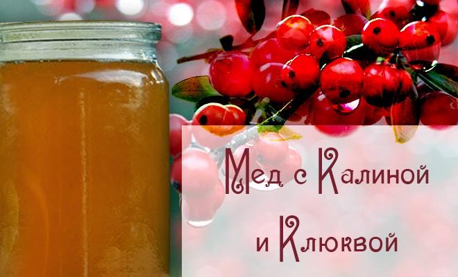 мед с калиной и клюквой