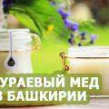 аккураевый мед