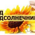 мед подсолнечника