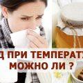 мед при температуре