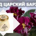 мед царский бархат