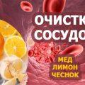 Натуральные продукты для лечения. Мед, чеснок и яблочный уксус