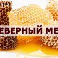 северный мед
