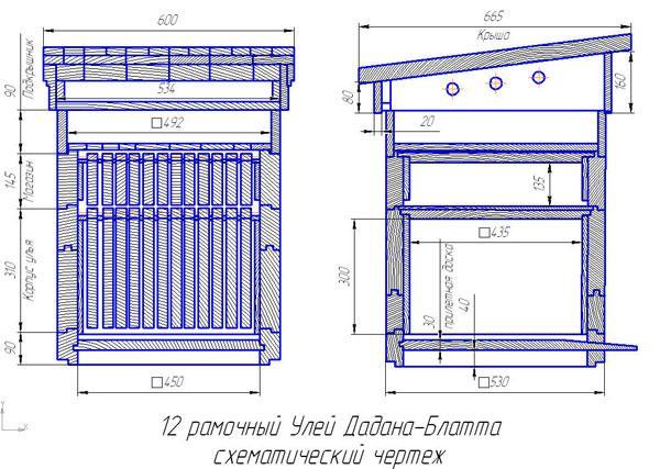 Схематический чертеж 12 рамочного дадана