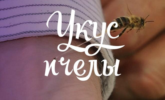 Пчелиные укусы в член