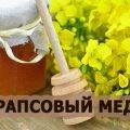 мед рапсовый