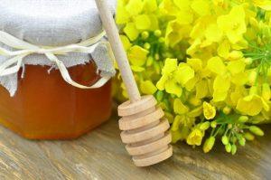 Польза рапсового меда