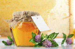 мед клеверный фото
