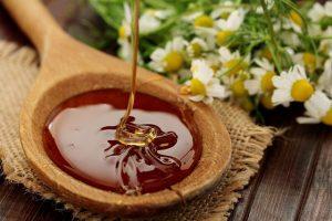 лесной мед полезные свойства