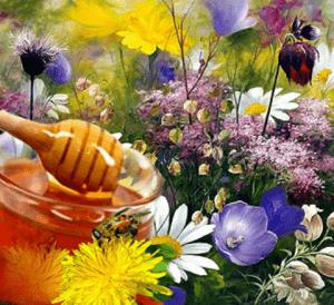 Горный мед разнотравье