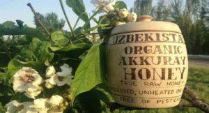 Аккураевый мёд- что это такое, полезные свойства и противопоказания,что это такое и как отличить подделку, процесс получения