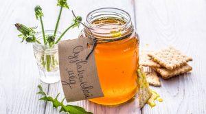 Польза и вред одуванчикового меда