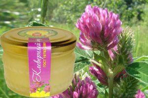 мед клеверный полезные свойства и противопоказания