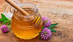 клеверный мед - полезные свойства