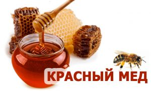 мед красный