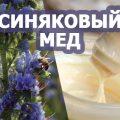 мед синяковый