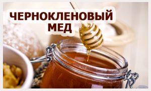 мед чернокленовый