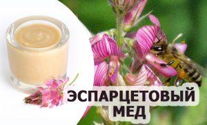 мед эспарцетовый