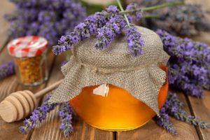 лавандовый мед полезные свойства