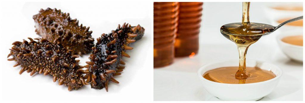 полезные свойства трепанга на меду