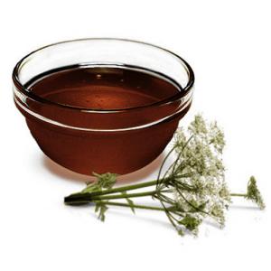 дягилевый мед полезные свойства и противопоказания