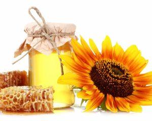мед подсолнечника полезные свойства