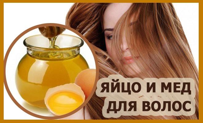 мед и яйцо для волос
