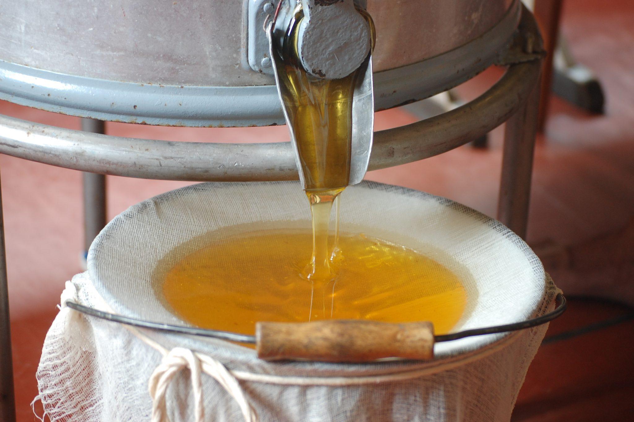 Откачка меда