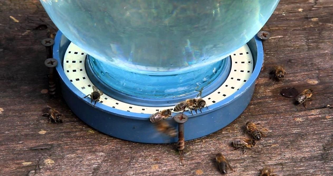 Изготовить поилку для пчел несложно