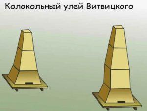 Улей Ветвицкого